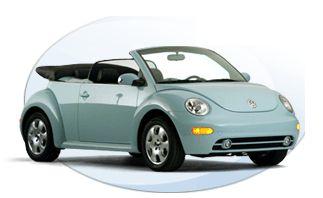 Beetle_Conv.jpg
